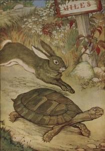 racconto e metafora - la tartaruga e la lepre